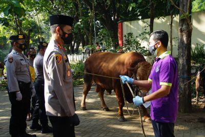 Hari Raya Idul Adha, Polres Malang Lakukan Penyembelihan Hewan Kurban